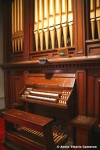 Organ-LR-6x9-8879